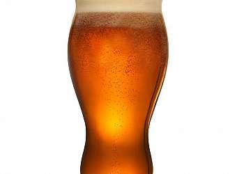 Lúpulo cerveja artesanal